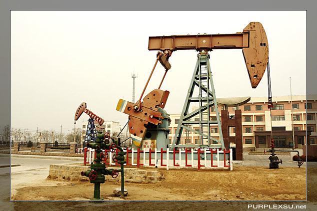 东营孤岛胜利油田